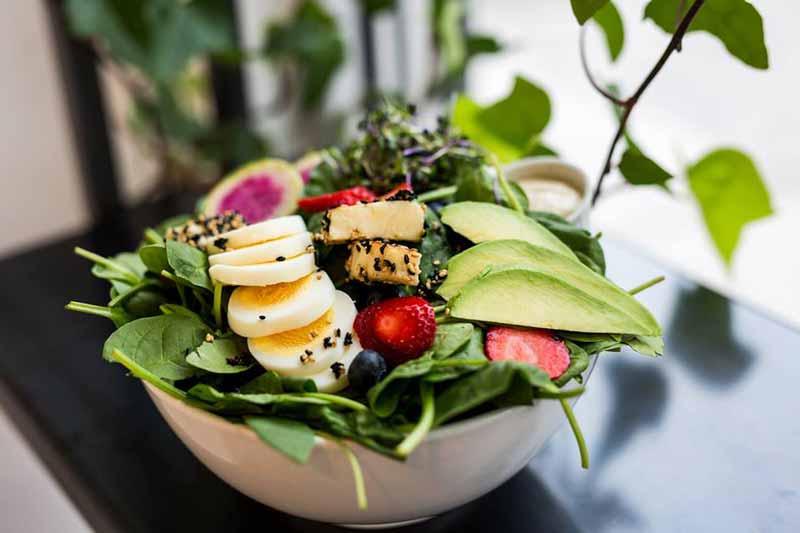 liv-salades-montreal-lunch-restaurant