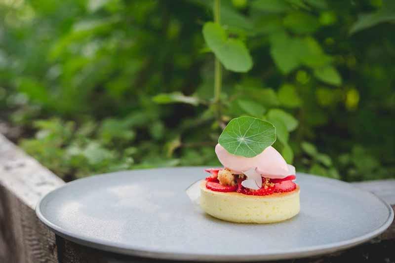 hvor-terrasse-restaurant-montreal