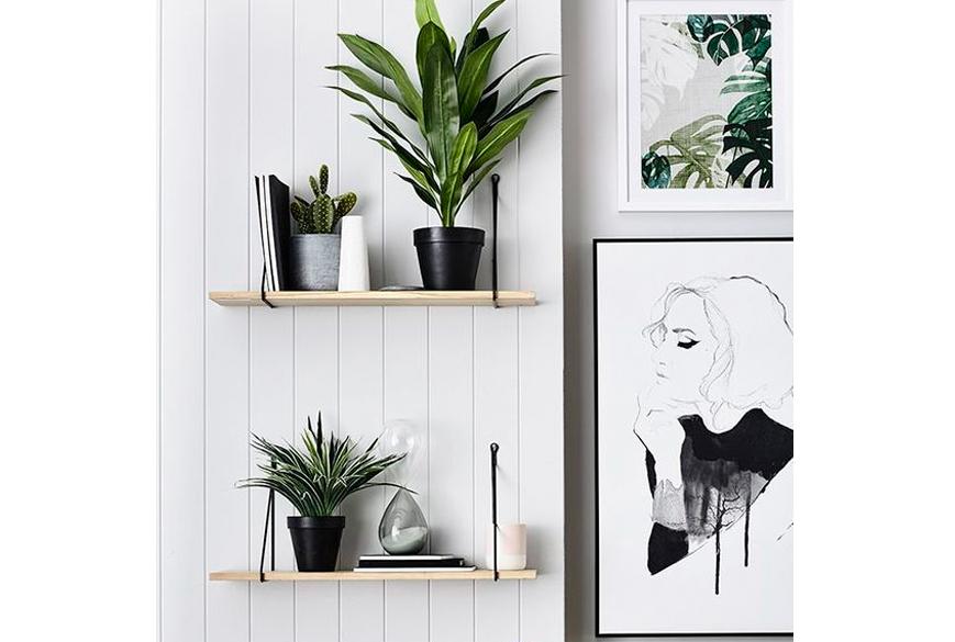 tendances-deco-botanique
