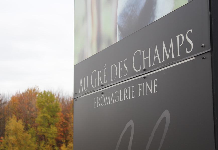 pommes-monteregie-activites-quebec-automne-bouffe-vin-blogue-caroline-elie-quoi-faire-augredeschamps