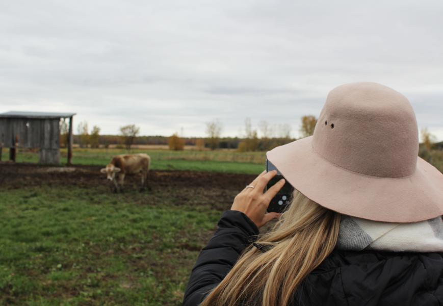 pommes-monteregie-activites-quebec-automne-bouffe-vin-blogue-caroline-elie-quoi-faire